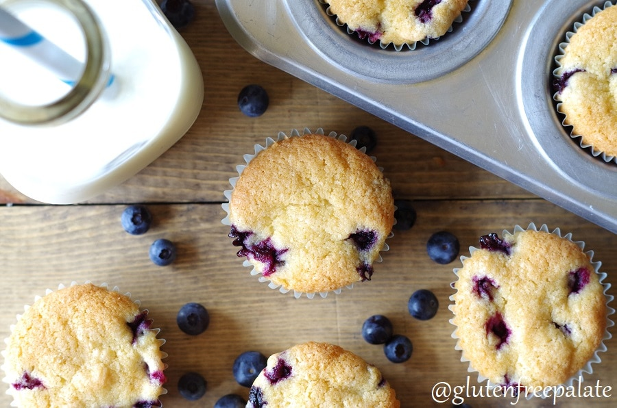 Gluten-Free Blueberry Muffins that are bursting with blueberries and lemon zest. With only ten ingredients, and two bowls, you can have these blueberry muffins rising in the oven.