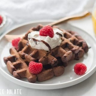 a close up of gluten free chocolate waffles on a white plate with raspberries