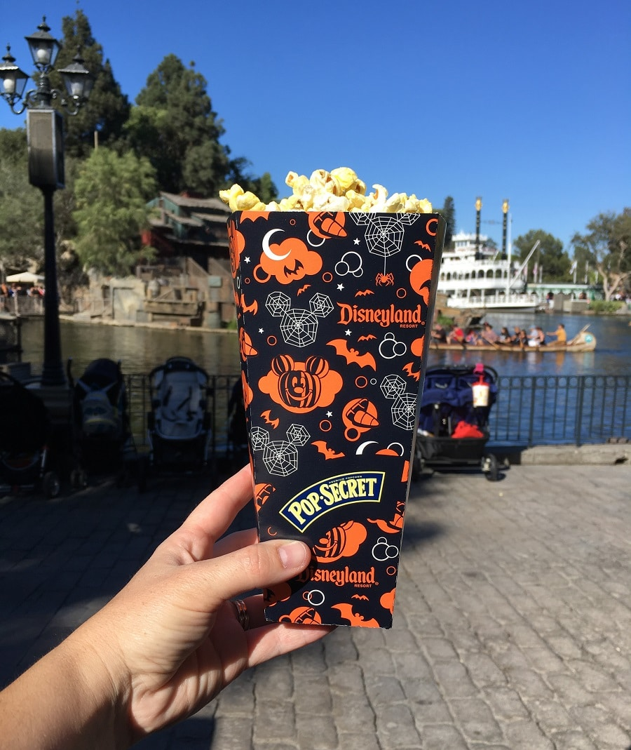 Gluten-Free Disneyland finds! My family of four had a blast at Disneyland, and we found some pretty amazing gluten-free food at Disneyland that we wanted to share with you.