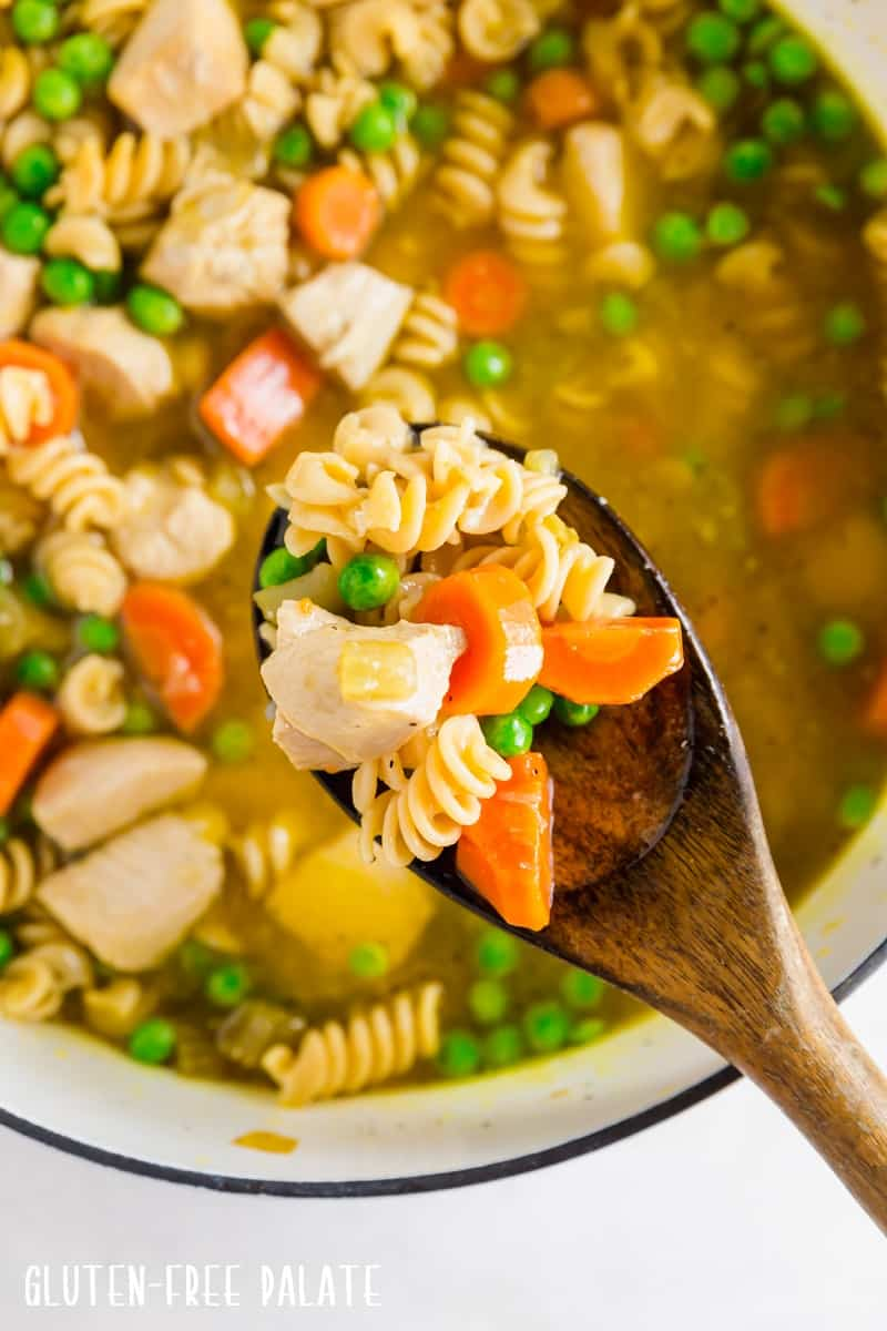 a spoonful of gluten free chicken noodle soup