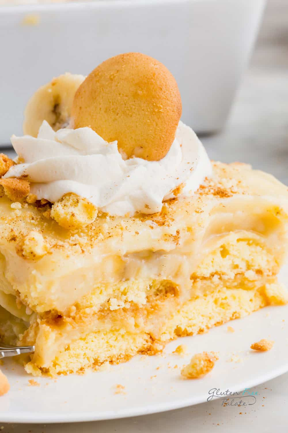 a close up of plated gluten free banana pudding