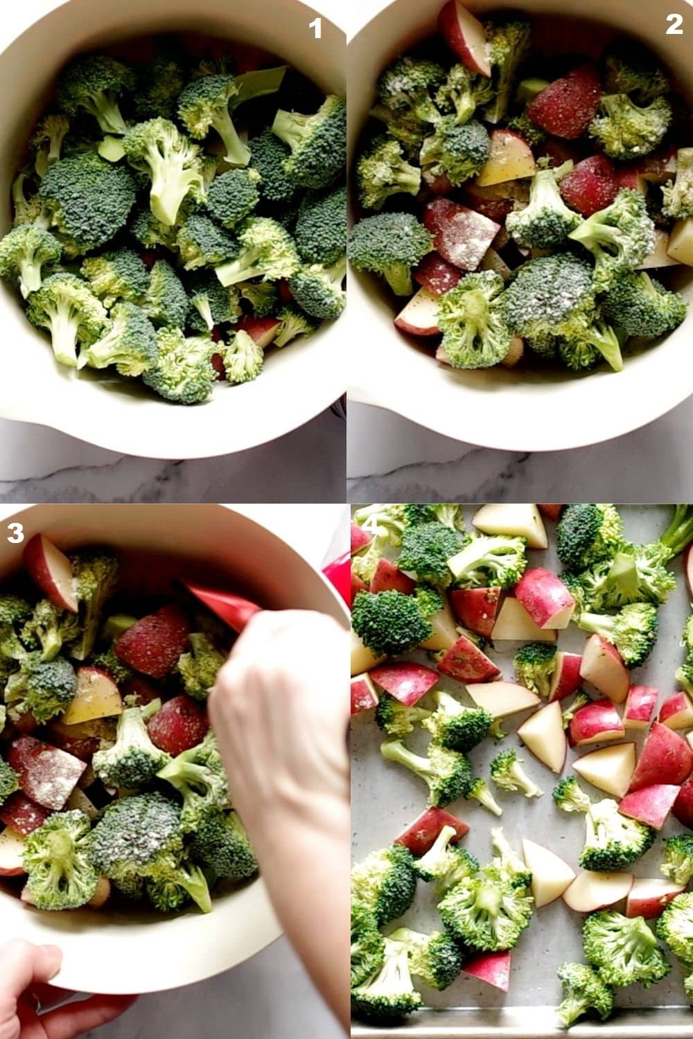 photo collage showing 4 steps needed to make roasted broccoli and potatoes